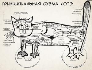 А правда ли, что кошки обладают особой энергетикой