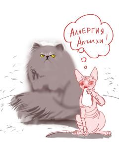 А правда ли, что существуют абсолютно гипоаллергенные породы кошек