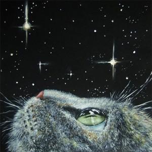 Шестое чувство кошки